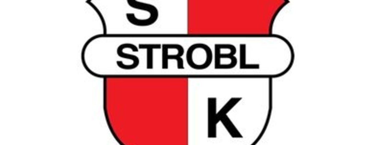 Abstieg in die 1. Landesliga